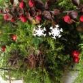 Orecchini Fiocco di Neve di Legno